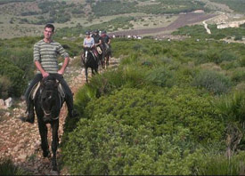 South West Sardinia horseback riding
